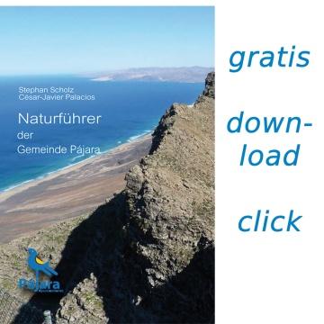 Naturführer der Gemeinde Pájara auf Fuerteventura